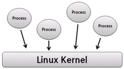 Htop - monitorowanie procesów, przykłady stanów procesów